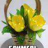 Brilliantovaya Karamel