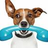Lucky2call - виджет обратного звонка на сайт