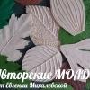 Авторские МОЛДЫ от Евгении Михалевской
