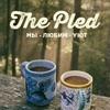 The Pled | Самый уютный семейный блог