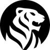 White Tiger Soft разработка мобильных приложений