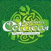 ANIMA CELTICA - Фестиваль кельтской музыки и тан