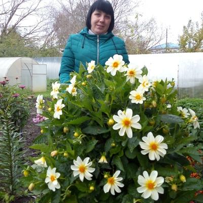 Любовь Самойлова