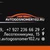 AvtoGosNomer102