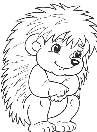 Рисунок профиля (Владимир Фесенко)