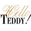 Hello Teddy - выставка мишек Тедди на Тишинке