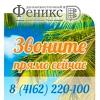 """Горящие туры из Благовещенска от """"ДВ Феникс"""""""