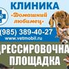 """Ветеринарная клиника """"Домашний любимец"""""""