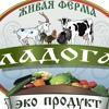 Фермерские продукты,  домашняя еда, Спб