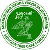 ЗДОРОВЫЙ ЛЕС Московская Школа ухода за деревьями