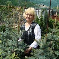 НатальяЛяшенко