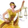Адвокаты|Юристы|Москва