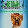 """Ветеринарный центр """"ВЕТЛАЙН"""" (Пермский ГАТУ)"""