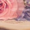 Поэзия земной души (Стихи)