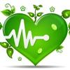 Все народные средства: лечение и профилактика за