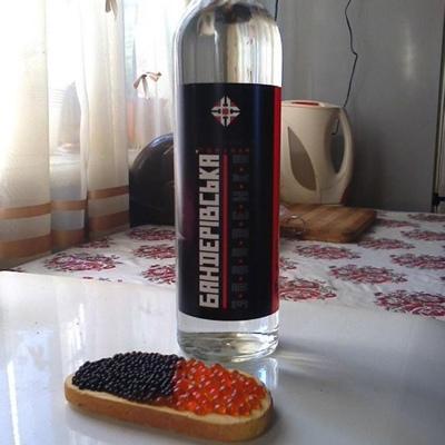 Slavik Nikityuk, Залещики
