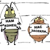 Уничтожение клопов, тараканов. Екатеринбург