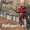 Арборист.su - профессиональный уход за деревьями