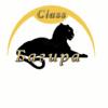 Центр Семейного Образования - Багира-Класс