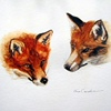 Shop-Two Foxes