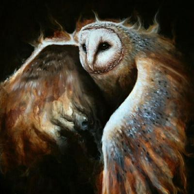 Elis Owl, Киев