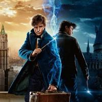 Hogwarts   Гарри Поттер   Фантастические твари