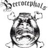 БИРОЦЕФАЛЫ | BEEROCEPHALS