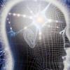 Нейро-нечіткі технології моделювання в економіці