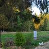 Коттеджный поселок Эксклюзив. Лесные участки