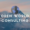 Open-World Consulting