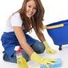Уборка квартир, мытье окон, выездная химчистка.