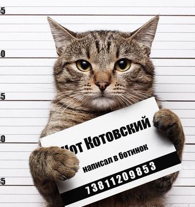 Константин Кот, Одесса