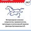 Ветеринарные услуги в Уфе. Ветеринарная клиника.