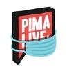 PimaLIVE & PimaSCHOOL - уроки гитары от PRO