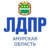 ЛДПР Амурская область