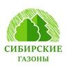 Сибирские газоны