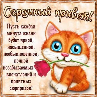 Щербакова Наталья, Йошкар-Ола