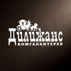 "ТС ""Дилижанс""   СУМКИ, БАГАЖ, АКСЕССУАРЫ"