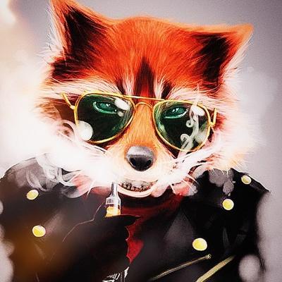 Fox Melon, Узловая