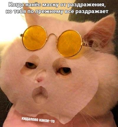 Максим Песков, Омск