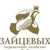 Живая усадьба / Перепелиное хозяйство Зайцевых