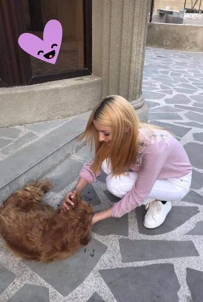 Ани Варданян, Москва