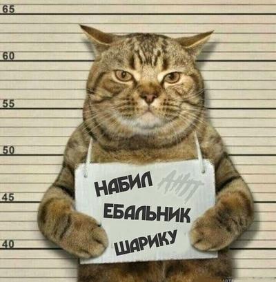 Алексей Кот, Ачинск