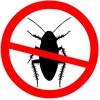 Уничтожение тараканов Хабаровск