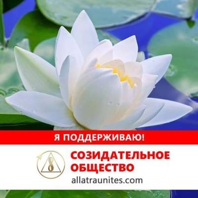 Елена Тупицына, Северодвинск