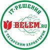 BELEM.RU - разработка сайтов, IT-решения|Казань