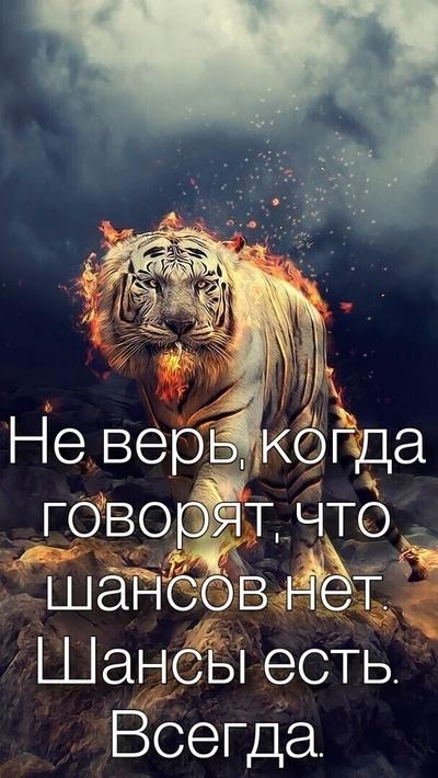 Алексей Попов, Чита