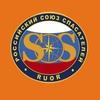 РОССОЮЗСПАС Владимирской области I Мониторинг33