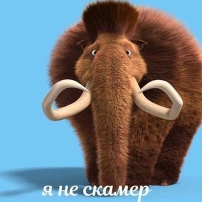 Влад Мамонтов