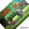 KIDS одежда 26-51
